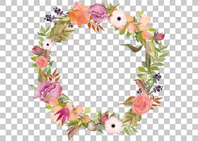 水彩植物花卉免扣装饰边框花圈素材