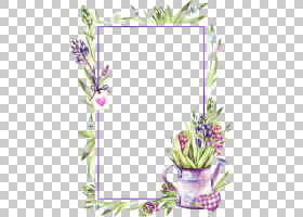 多彩花卉边框