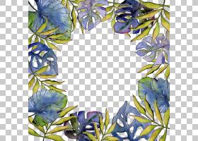 热带植物叶子水彩画