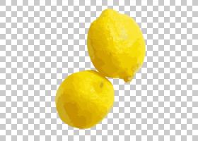 柠檬手绘插画免扣元素素材