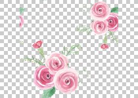 水彩玫瑰花卉插画免扣元素