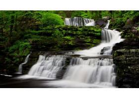 地球,瀑布,瀑布,绿色的,森林,自然,壁纸,(1)