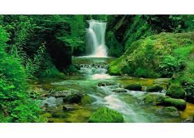 地球,瀑布,瀑布,绿色的,森林,自然,壁纸,(2)