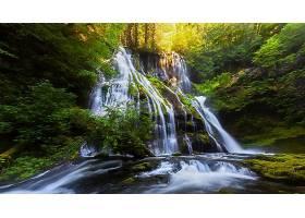 地球,瀑布,瀑布,绿色的,森林,自然,壁纸,