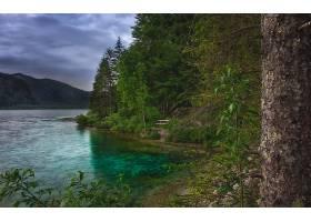 地球,湖,湖,树,绿色的,壁纸,