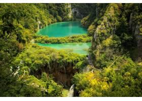 地球,瀑布,瀑布,Plitvice,湖,国家的,公园,树,森林,湖,壁纸,