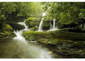 地球,瀑布,瀑布,岩石,森林,树,绿色的,壁纸,(2)