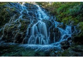地球,瀑布,瀑布,岩石,森林,绿色的,壁纸,(2)