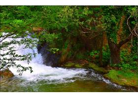 地球,瀑布,瀑布,树,绿色的,壁纸,(1)