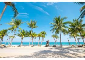 地球,海滩,自然,沙,手掌,树,海洋,天空,地平线,热带的,壁纸,