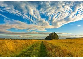地球,风景,自然,领域,地平线,草,天空,云,壁纸,