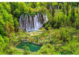 地球,瀑布,瀑布,森林,树,绿色的,壁纸,(1)