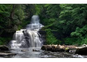 地球,瀑布,瀑布,森林,绿色的,壁纸,(2)