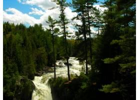 地球,河,森林,绿色的,壁纸,