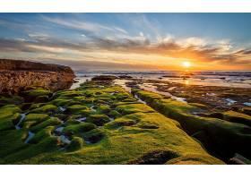 地球,海岸线,自然,海,水,太阳,云,苔藓,天空,风景,地平线,海景画,