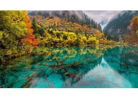 地球,反射,秋天,叶子,湖,树,壁纸,