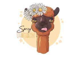骆驼卡通插画设计