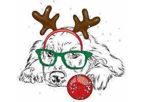 圣诞节戴驯鹿角的狗插画设计