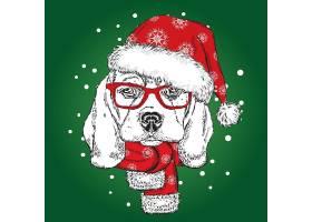 宠物狗圣诞帽围巾插画设计