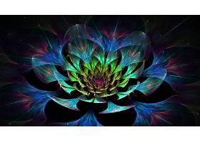 抽象,不规则碎片形,花,莲花,彩色,3D,壁纸,