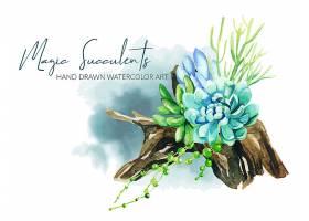 绿色天然多肉植物花卉叶子盆栽矢量装饰插画设计
