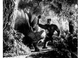 电影,国王,孔,(1933年),壁纸,(20)