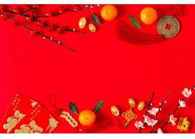 美丽的中国新年概念_1123876301