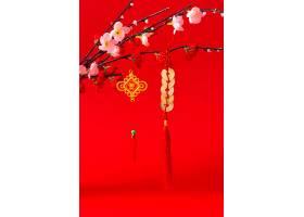 美丽的中国新年概念_1123878001
