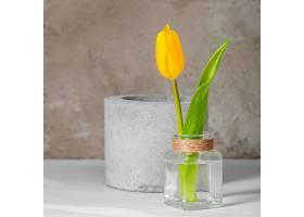 前景花瓶中的黄色郁金香_1206773301
