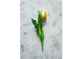 桌面上的俯视黄色郁金香_689434401