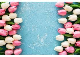 蓝色垃圾背景上的粉色和白色郁金香_391305601