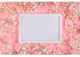 粉色背景下环绕着白色婴儿呼吸花朵的白色空_387513201
