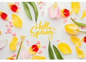 你好春天的话和花瓣_1247937101图片