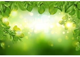 绿色抽象散焦背景上的树叶边框_47586020101
