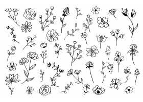 手绘花卉套装_4089974