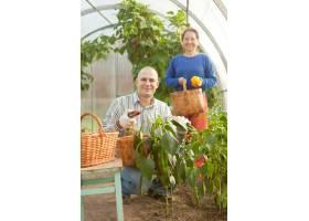 蔬菜厂里的男人和女人_1631750