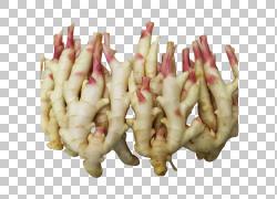根菜类姜块茎,黄姜PNG剪贴画食物,黄色花朵,封装的PostScript,动