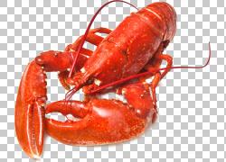 龙虾海鲜烧烤,龙虾PNG剪贴画甲壳动物,食品,动物,海报,美食,烹饪,