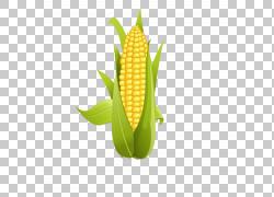 玉米棒玉米玉米,玉米PNG剪贴画食物,叶子,稻谷,封装的PostScript,