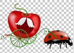 瓢虫PNG剪贴画爱,食物,心脏,昆虫,卡通,水果,封装的PostScript,瓢
