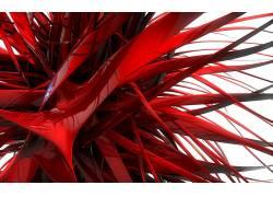数字艺术,抽象,3D,红,给予,反射,白色背景168553