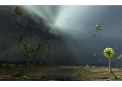树木,气球,抽象,艺术品,数字艺术,超现实主义106110图片