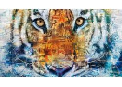Pi的生活,虎,动物,电影,大学498117