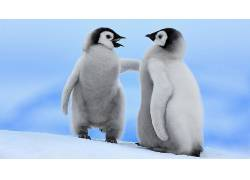 企鹅,动物488804