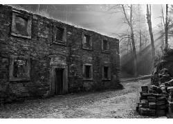 摄影,单色,老建筑,太阳光线,弃,砖块,树木,植物,门,路径635278
