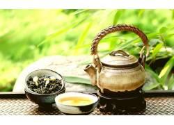 摄影,植物,壁纸,茶,景深327849