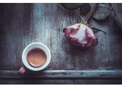 花卉,玫瑰,杯子,咖啡476863