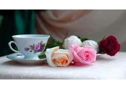 杯子,花卉,玫瑰90375