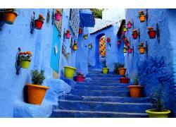 花卉,市,楼梯,花盆223060