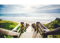 海,海滩,植物,绿色,楼梯,水,砂544966